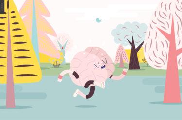運動が脳に及ぼす効果【最適なエクササイズをレベル別に紹介】