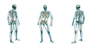 人間の痩せ機能【セットポイントを解説】リバウンドしないための必須知識